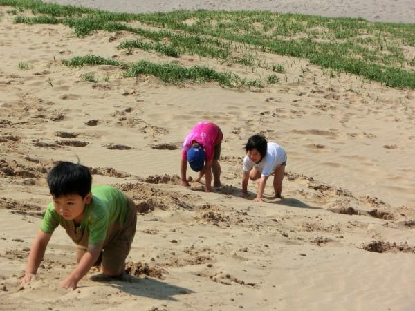 鳥取砂丘をよじ登る